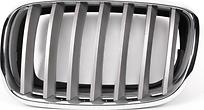 Решетка радиатора левая (хром, серая) BMW X6 2008-2014 год / E71
