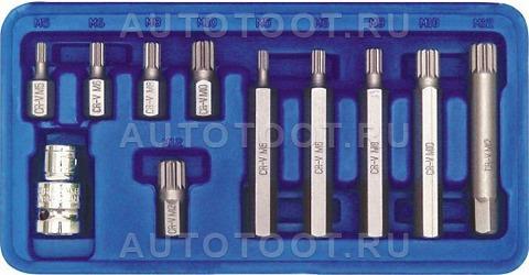 Набор бит SPLINE, 11 пр, 30 мм: M5, M6, M8, M10, M12, 75 мм: M5, M6, M8, M10, M12, в пласт. боксе -